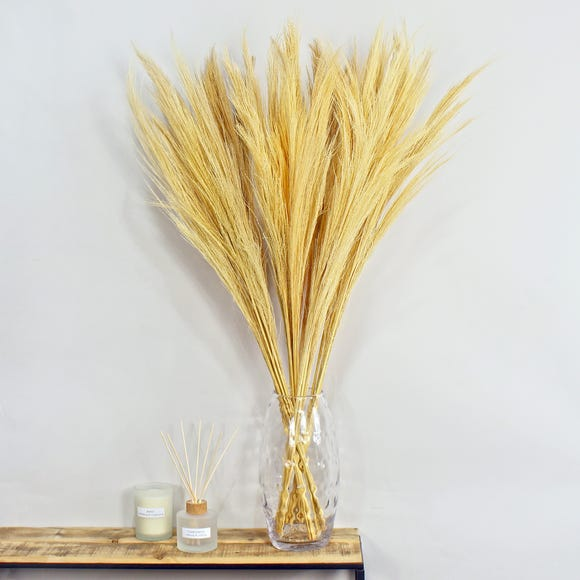 Dried Broom Grass 100cm 6 Pack Bleached Natural