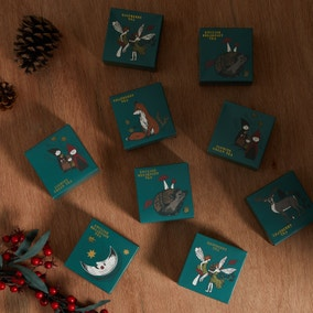 Pack of 9 Winter Solstice Tea Selection