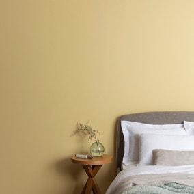 Dunelm Primrose Eggshell Emulsion Paint