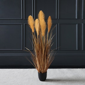 Brown Potted Pampas 120cm