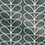 color Orla Kiely Linear Stem Grey Fabric Swatch