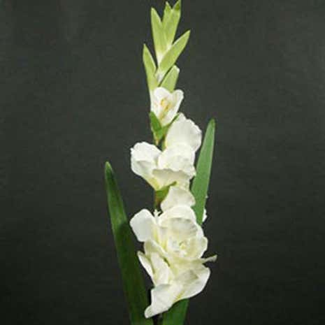 Artificial Cream Gladiolus Flower Stem