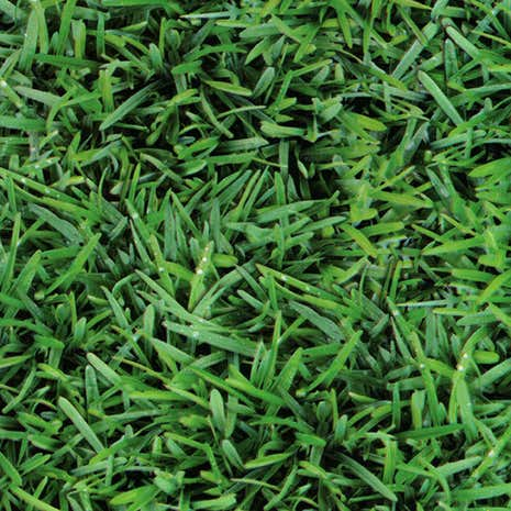 Grass Printed PVC Fabric