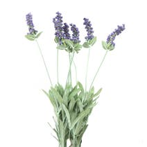 Artificial Lavender Bush