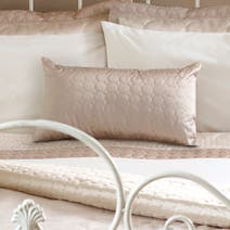 Latte Circles Boudoir Cushion