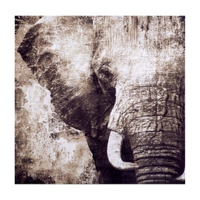 Elephant Printed Canvas