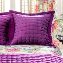 Dorma Tropical Cordelia Magenta Continental Pillow Sham