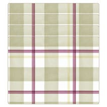 Misty Moors Set of 4 Tartan Placemats