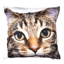 Photographic Cat Cushion