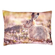 Photographic Hare Cushion