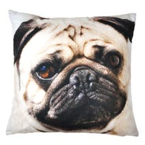 Photographic Pug Cushion