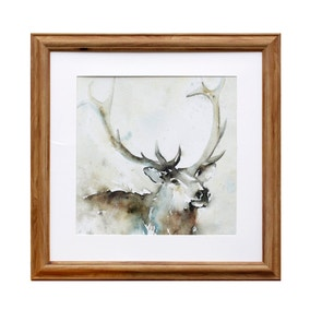 Watercolour Stag Framed Print