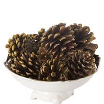 Mulled Wine Scented Pinecones