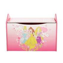 Disney Princess Toybox