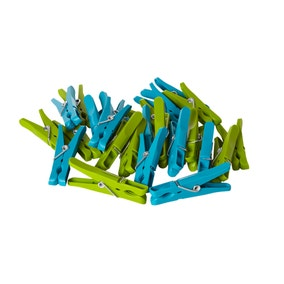 Pack of 24 Pegs