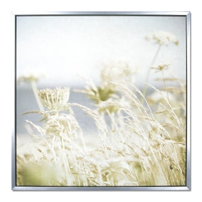 Hotel Meadow Boxed Canvas