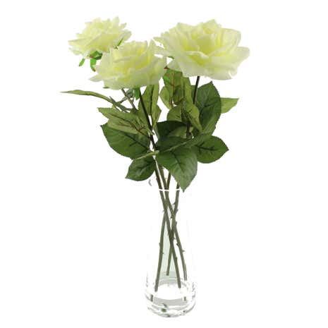 Cream Roses in Glass Vase