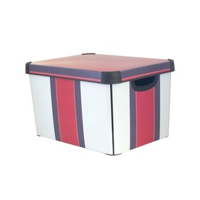 Kids Varsity Stripe Storage Box