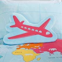 World Maps 3D Aeroplane Cushion