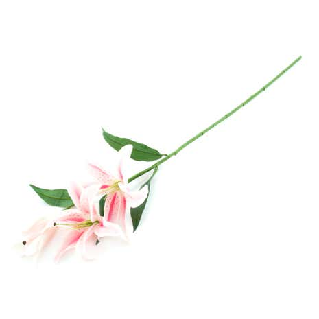Dorma Casablanca Artificial Lily Stem