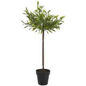 Artificial Green Bay Tree