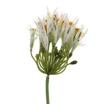 Artificial White Agapanthus Stem
