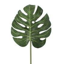 Artificial Green Cheese Plant Leaf Stem
