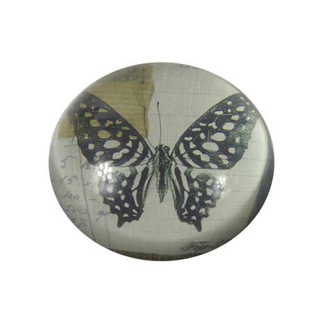 Multi Coloured Glass Butterfly paperweight