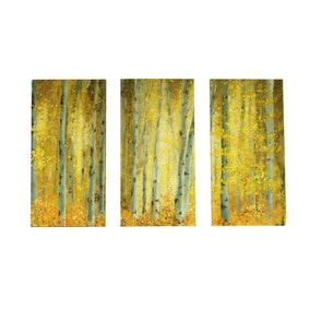 Sunlit Woodland Triptych Canvas