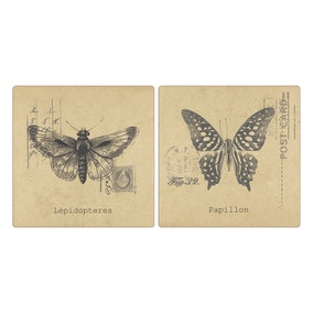 Pack of 4 Butterfly Placemats