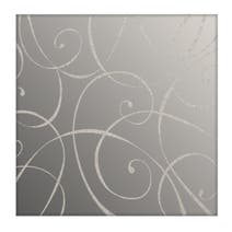 2 Elegant Script Mirrored Placemats