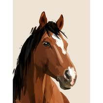 Quirky Horse Wood Effect Plaque