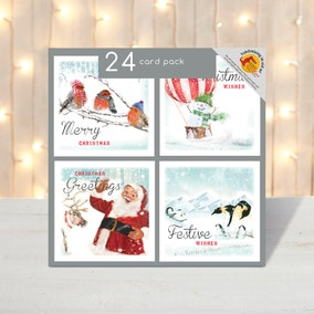 Pack of 20 Santa and Robin Christmas Cards