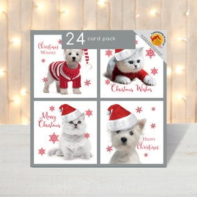 Pack of 24 Photographic Cats and Dogs Christmas Cards