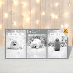Pack of 15 Photo Ice Animals Christmas Cards