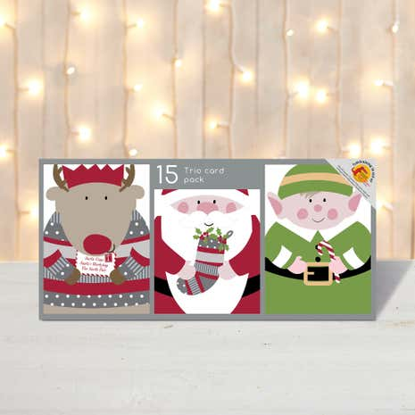 Pack of 15 Photo Fun Characters Christmas Cards