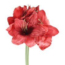 Artificial Red Amaryllis Flower
