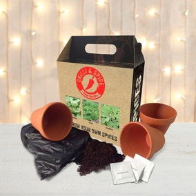 Grow Your Own Spices Gift Pack