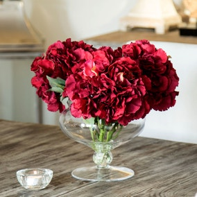 Dorma Hydrangeas in Footed Vase