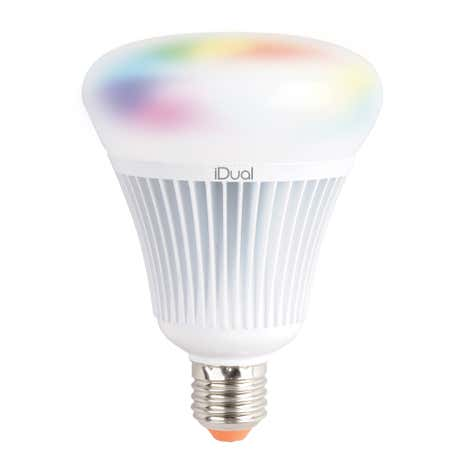 iDual 75 Watt G100 Edison Screw LED Bulb with Remote Control
