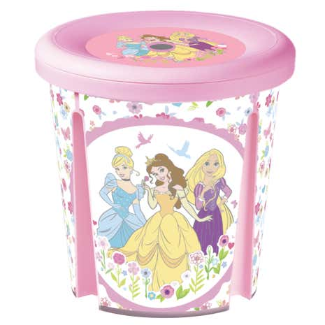 Disney Princess Sit and Store