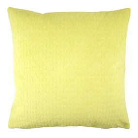 Andie Apple Cushion Cover
