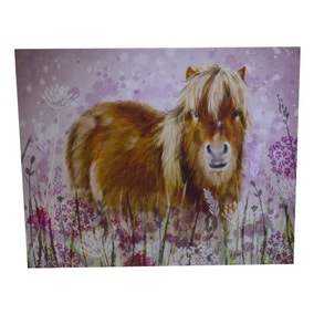 Highland Pony Canvas