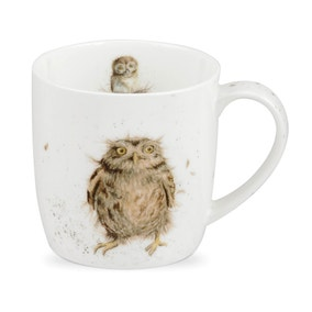 Royal Worcester Wrendale What a Hoot Mug