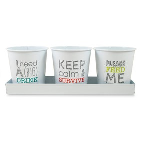 Icons Set Of 3 Herb Pots with Tray