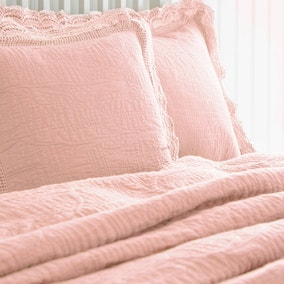 Lace Edge Blush Pillow Sham