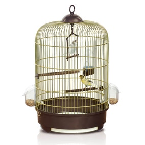 Brown Milly Budgie Cage