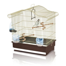 Serena Budgie Cage