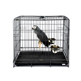 Large Transport Cage