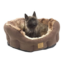 House of Paws Arctic Fox Dog Bed